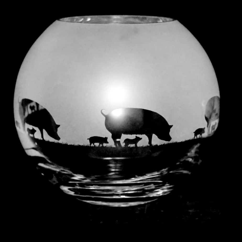 PIG Small Crystal Glass Globe Vase