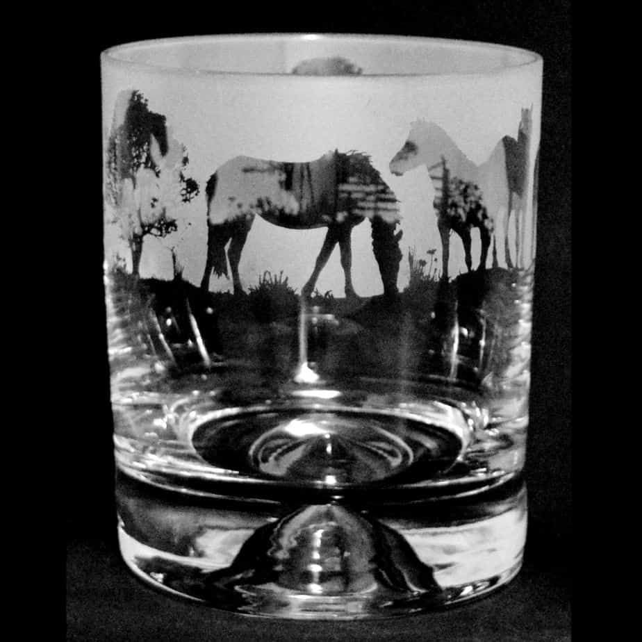 NEW FOREST PONY Whisky Tumbler