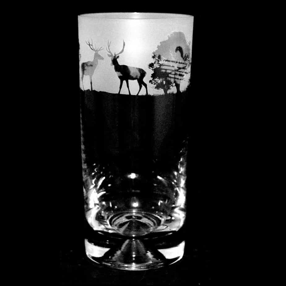 COUNTRY LIFE WOODLAND SCENE Highball Glass