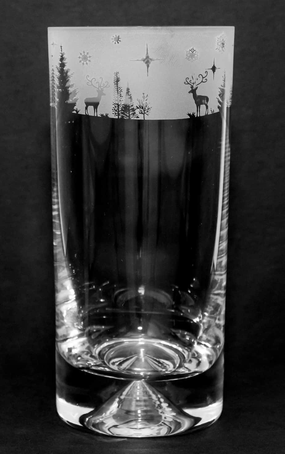 WINTER WONDERLAND Highball Tumbler
