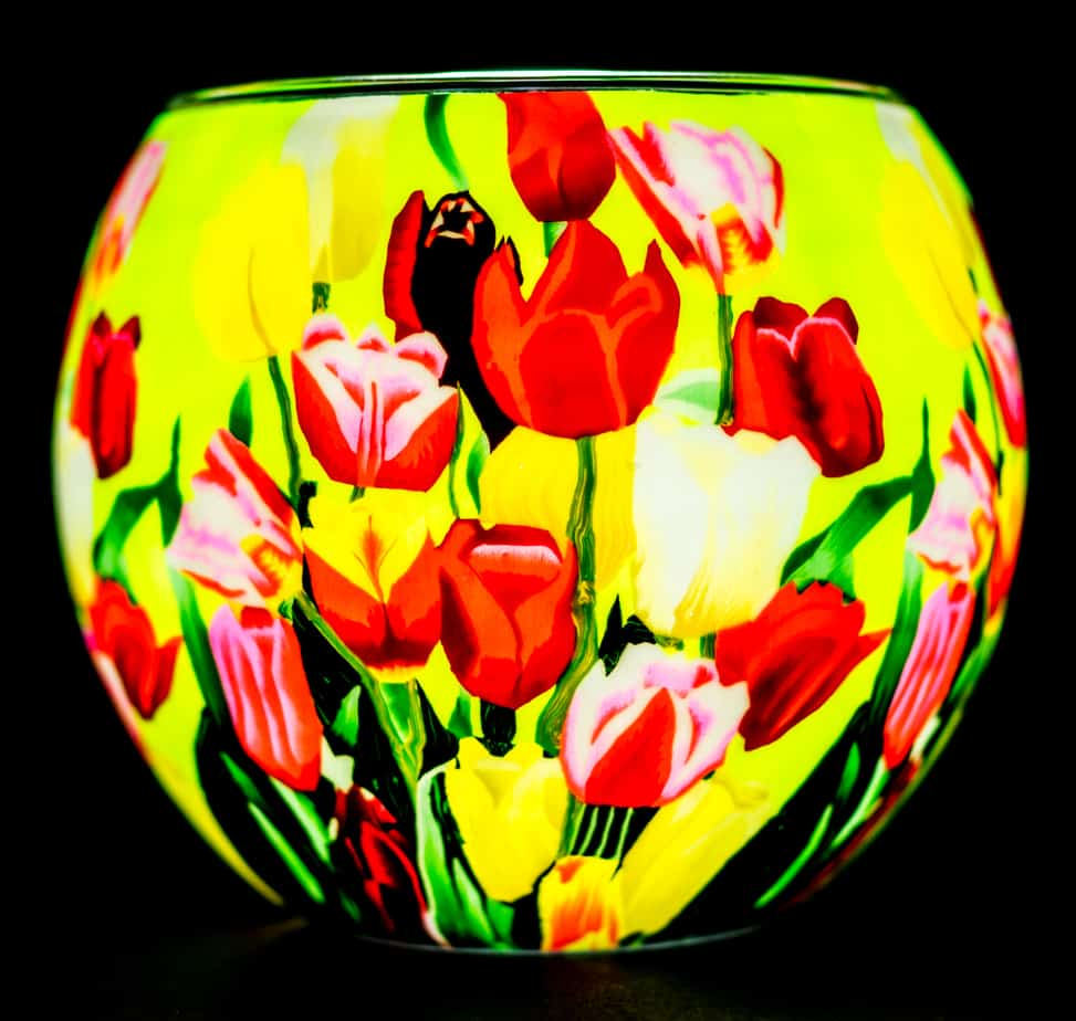 Tulips Light Glass (165020)