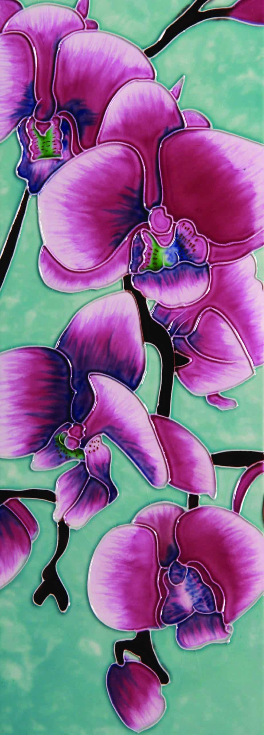 Orchid Beauty 6×16 (121185)