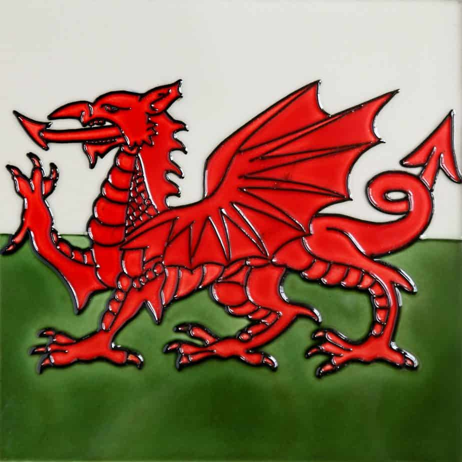 Welsh Dragon Coaster (165060)